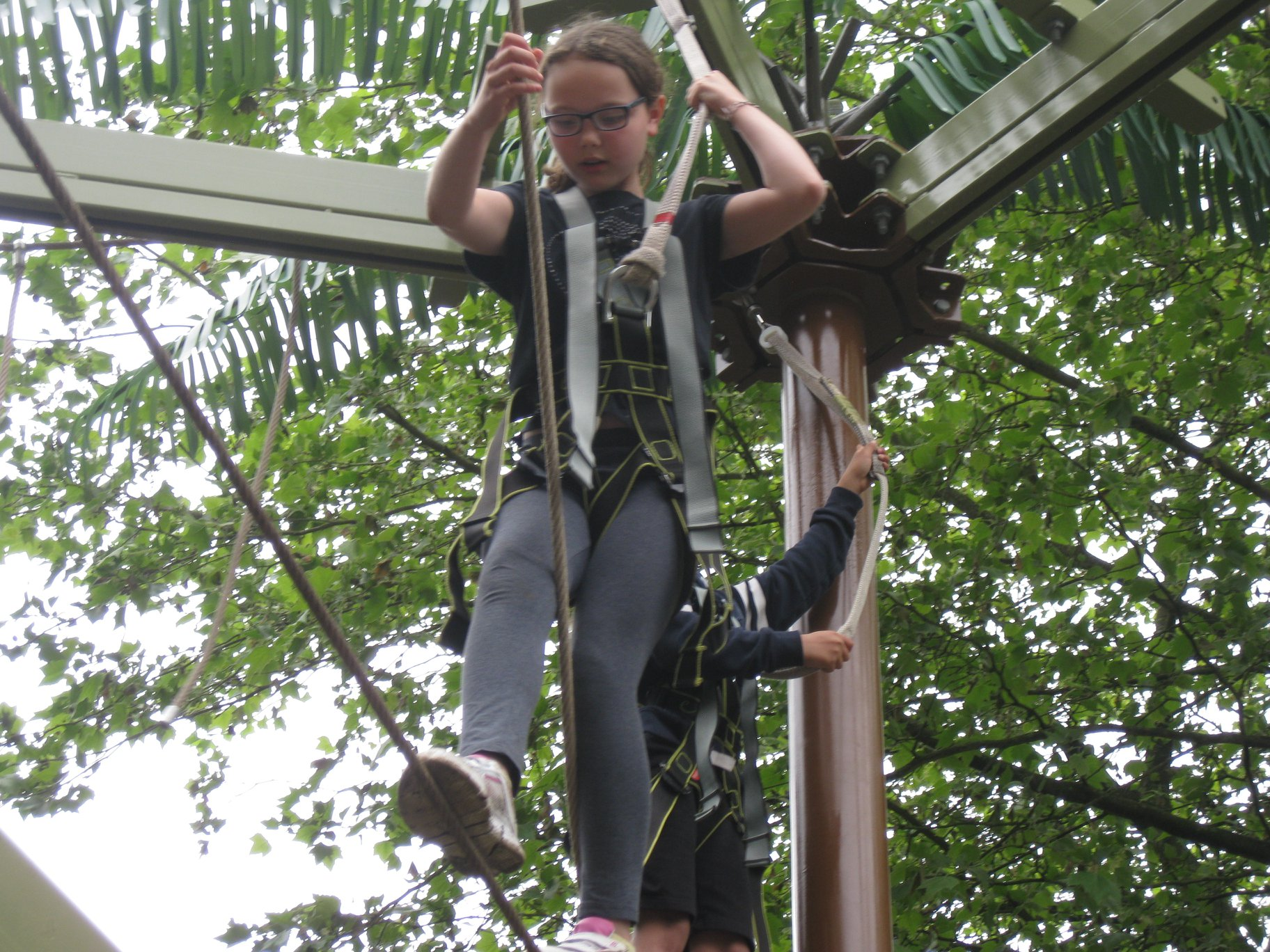Cubs High Ropes